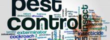 pest-kontrol-nedir-proseduru-sirketleri-firmalari